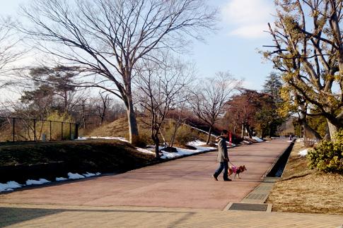 狭山公園でお散歩